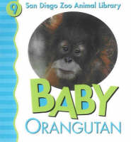 Baby Orangutan by Julie D. Shively