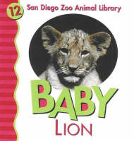 Baby Lion by Julie D. Shively