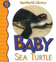 Baby Sea Turtle by Patricia A. Pingry, SeaWorld