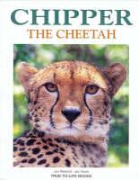 Chipper the Cheetah by Jon Resnick, Jan Davis