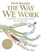 The Way We Work by David Macaulay
