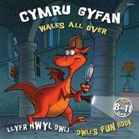 Cymru Gyfan Wales All Over by Elin Meek