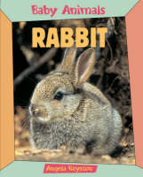 Rabbit by Angela Royston