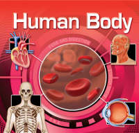 The Human Body by