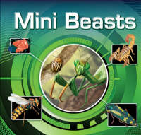 Mini Beasts by