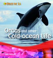Orcas and Other Cold Ocean Life by Sally Morgan