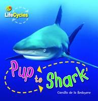 Pup to Shark by Camilla de la Bedoyere
