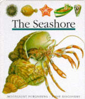 The Seashore by Pascale de Bourgoing, Jeunesse Gallimard