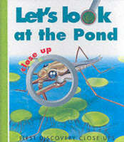 Let's Look at the Pond by Caroline Allaire, Gallimard Jeunesse