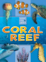Coral Reef by