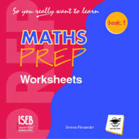 So You Really Want to Learn Maths Book 1 Worksheets CD by Serena Alexander