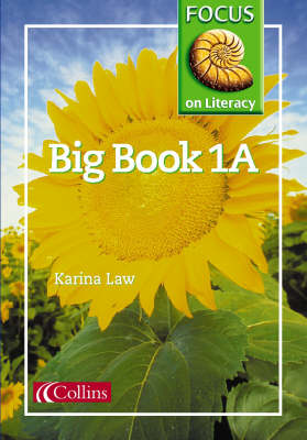 Focus on Literacy Big Book by Karina Law