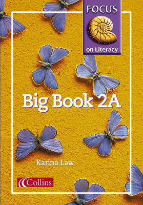 Focus on Literacy Big Book by Karina Law, Barry Scholes