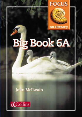 Focus on Literacy Big Book by John McIlwain, Barry Scholes