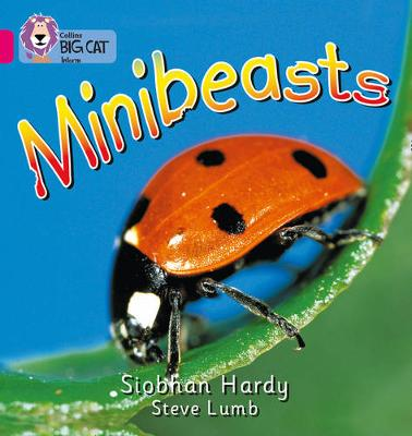 Minibeasts Band 01A/Pink A by Siobhan Hardy