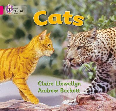 Collins Big Cat Cats: Band 01B/Pink B by Claire Llewellyn