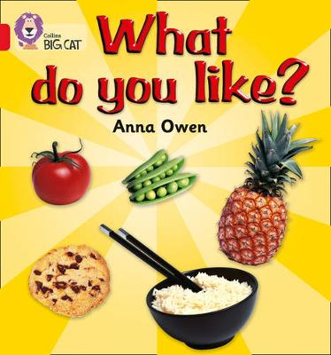 Collins Big Cat What Do You Like?: Band 02B/Red B by Anna Owen, Steve Lumb