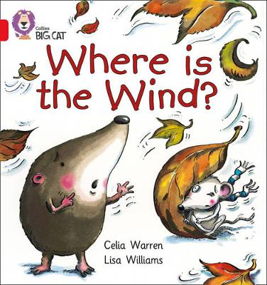 Where is the Wind? Band 02B/Red B by Celia Warren