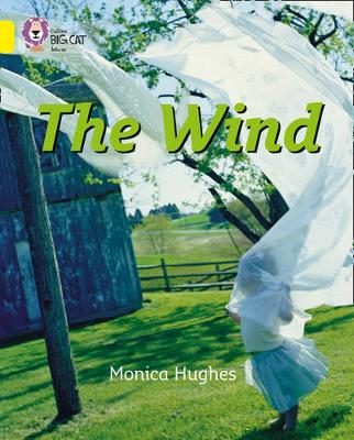 Collins Big Cat The Wind: Band 03/Yellow by Monica Hughes