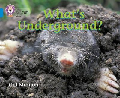 What's Underground Band 04/Blue by Gill Munton