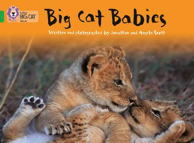 Collins Big Cat Big Cat Babies: Band 05/Green by Jonathan Scott, Angela Scott
