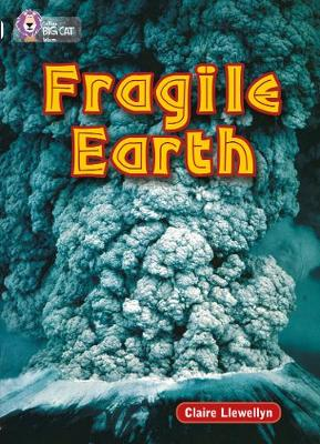 Fragile Earth Band 17/Diamond by Claire Llewellyn