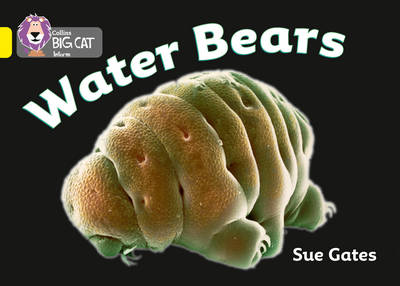 Collins Big Cat Water Bears: Band 03/Yellow by Susan Gates