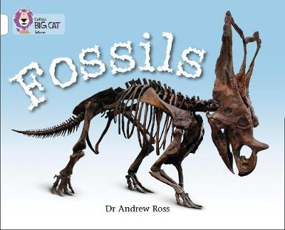Fossils Band 10/White by Andrew Ross