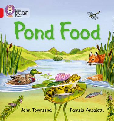 Pond Food Red B/Band 02b by John Townsend