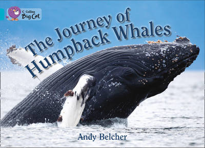 Collins Big Cat The Journey of Humpback Whales: Band 07/Turquoise by Collins Big Cat