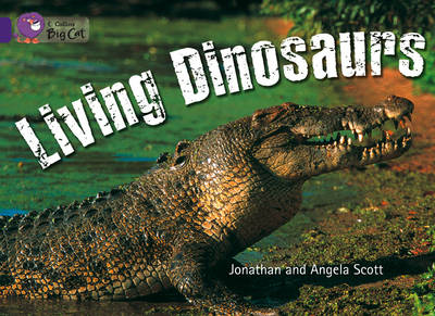 Living Dinosaurs Workbook by