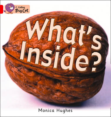 What's Inside? Workbook by