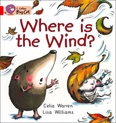 Where is the Wind? Workbook by