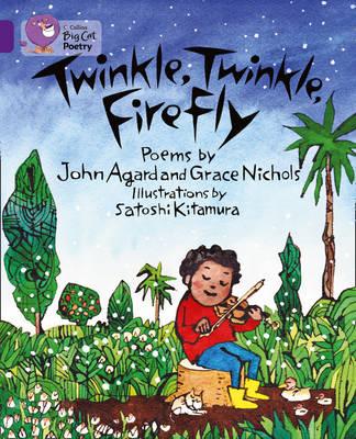 Twinkle, Twinkle, Firefly Workbook by