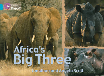 Africa's Big Three Band 07/Turquoise by Jonathan Scott, Angela Scott