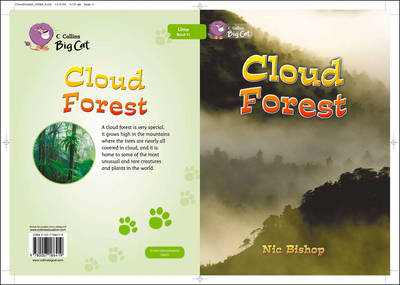 The Cloud Forest Workbook by