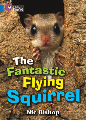 The Fantastic Flying Squirrel: Band 04/Blue by Nic Bishop