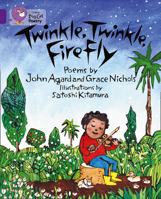 Twinkle, Twinkle, Firefly Workbook by