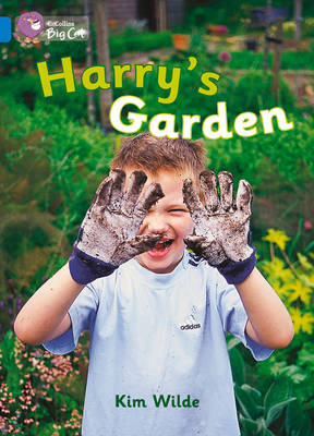Collins Big Cat Harry's Garden Workbook by