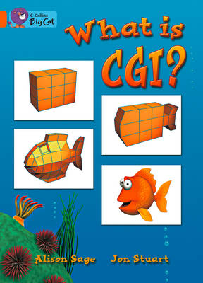 What is CGI? Workbook by