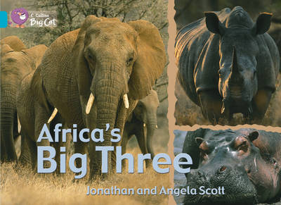 Africa's Big Three Workbook by