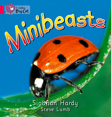 Collins Big Cat Minibeasts: Band 01A/Pink A by Siobhan Hardy