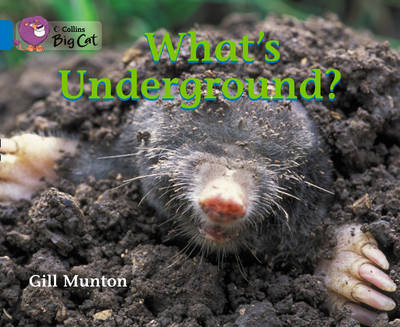 What's Underground: Band 04/Blue by Gill Munton