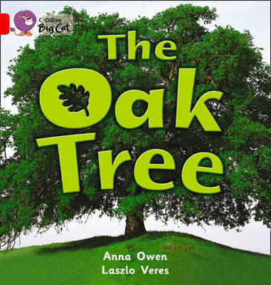 Collins Big Cat The Oak Tree: Band 02B/Red B by Anna Owen