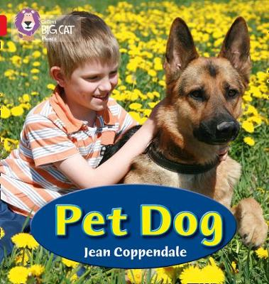 Collins Big Cat Phonics Pet Dog: Band 02A/Red A by Jean Coppendale