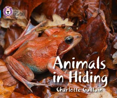 Collins Big Cat Animals in Hiding: Band 04/Blue by Charlotte Guillain