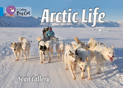 Collins Big Cat Arctic Life: Band 04/Blue by Sean Callery