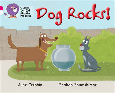 Collins Big Cat Phonics Progress Dog Rocks!: Band 01B Pink B/Band 10 White by June Crebbin