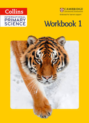 International Primary Science Worklbook 1 by Phillipa Skillicorn, Karen Morrison, Tracey Baxter, Sunetra Berry