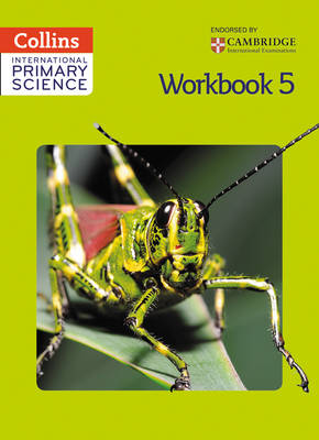Collins International Primary Science International Primary Science Workbook 5 by Karen Morrison, Tracey Baxter, Daphne Paizee, Phillipa Allum